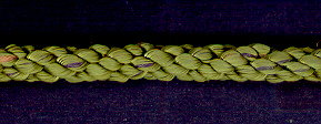 Cushion Cord Natural, Mist, Price per mt - Click Image to Close